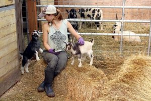 Animal rescue granted ownership